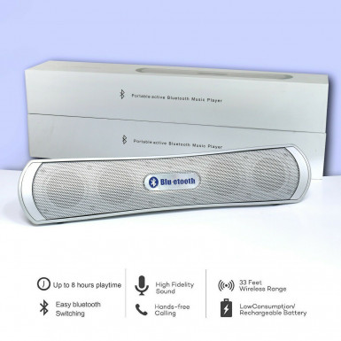 Portable Bluetooth Wireless Speaker RADIO MicroSD Reader SILVER